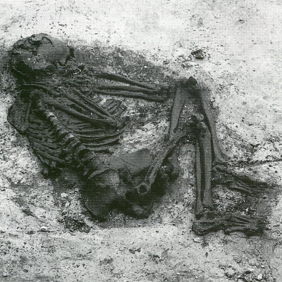 Het Woiffie van Sijbekarspel, zoals gevonden in 1989 op het land van 'Zorg en Hoop', momenteel te zien in het Westfries Museum